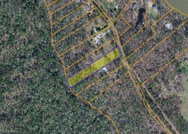 9915 Sycamore Landing Rd, James City County, VA 23188 (#10194571) :: The Kris Weaver Real Estate Team