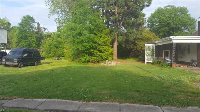 312 Saint James Cmn, Suffolk, VA 23434 (MLS #10195308) :: AtCoastal Realty