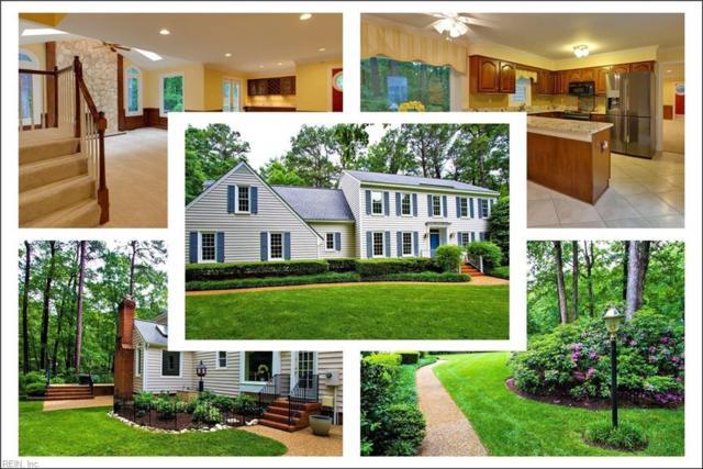 2730 Bosham Ln, Chesterfield County, VA 23113 (#10195610) :: The Kris Weaver Real Estate Team