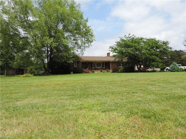 10367 Stallings Creek Dr, Isle of Wight County, VA 23430 (#10195860) :: Abbitt Realty Co.