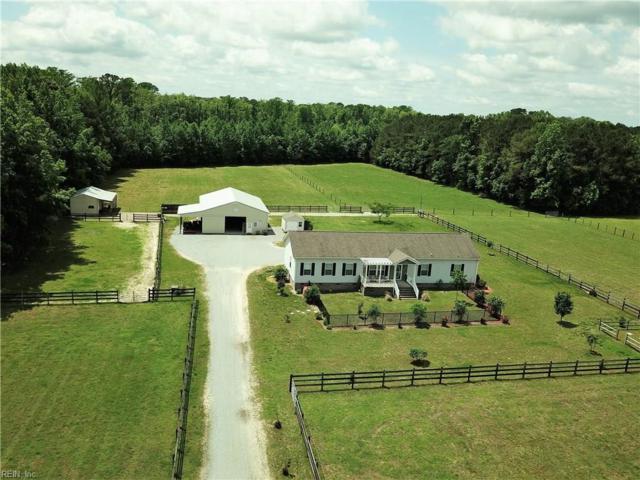 5538 Mineral Spring Rd, Suffolk, VA 23438 (#10196328) :: Reeds Real Estate