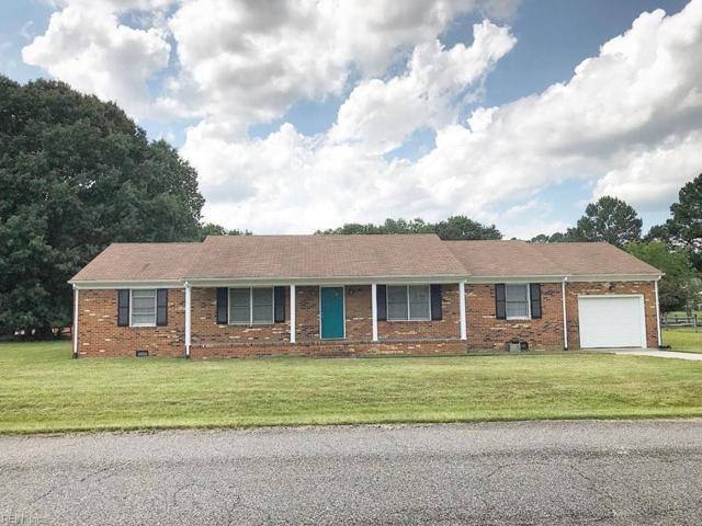 100 Discovery Ln, James City County, VA 23185 (#10196696) :: Resh Realty Group