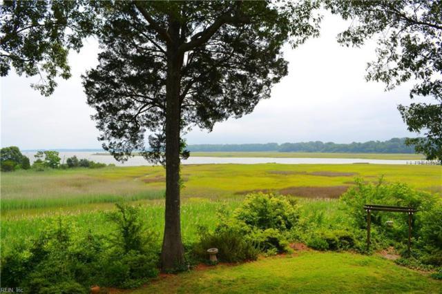 116 Settler's Landing Rd, Suffolk, VA 23435 (#10197226) :: Atkinson Realty