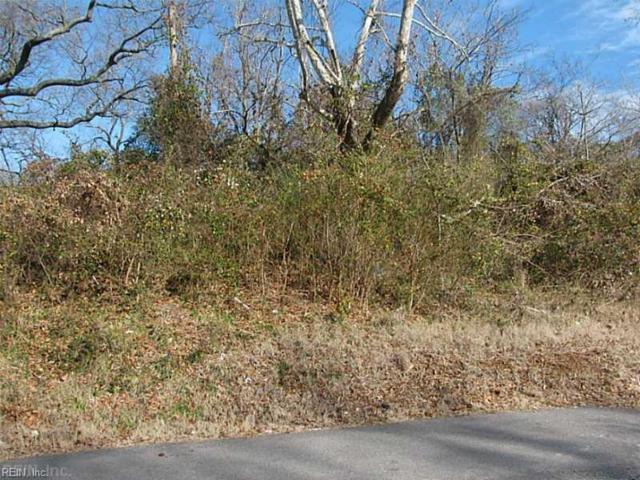 1012 Virgilina Ave, Norfolk, VA 23503 (#10197420) :: Berkshire Hathaway HomeServices Towne Realty