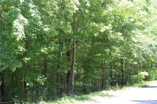 31AC Parcel #56-11 Terrapin Swamp Rd Rd, Surry County, VA 23883 (#10197865) :: Resh Realty Group