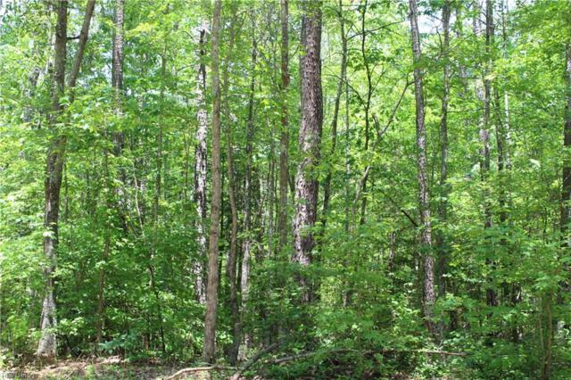 44AC Parcel #63-1 Terrapin Swamp Rd, Surry County, VA 23883 (#10197873) :: Atkinson Realty