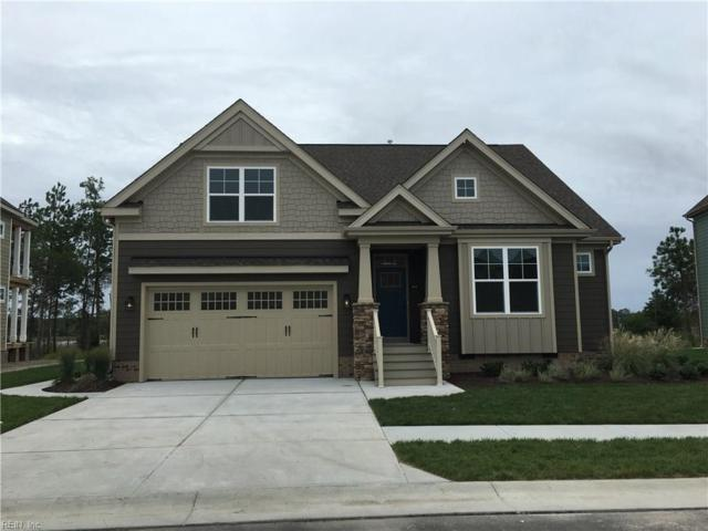 189 Tranquility Trce #1, Chesapeake, VA 23320 (#10198072) :: Abbitt Realty Co.