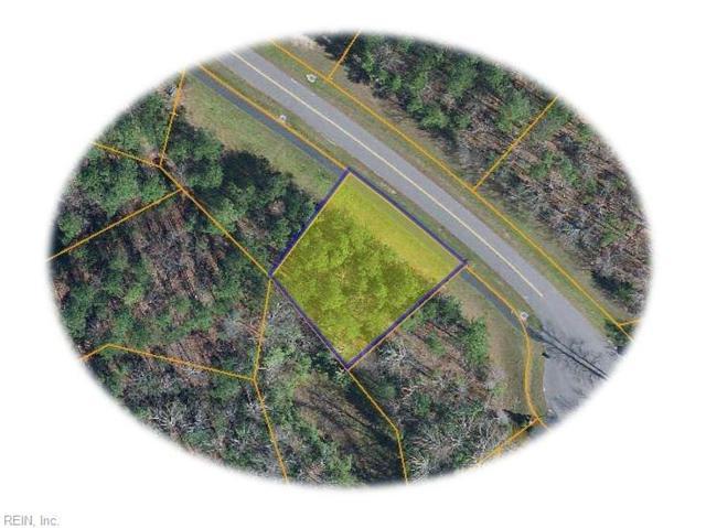 9986 Mill Pond Rn, James City County, VA 23168 (#10199031) :: Abbitt Realty Co.