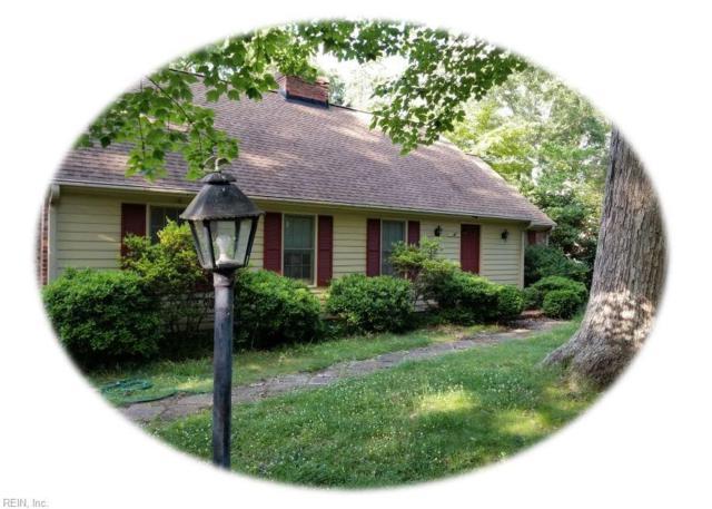 109 Ware Rd, James City County, VA 23185 (#10199529) :: Atkinson Realty