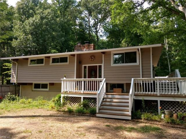 205 Lindsay Landing Ln, York County, VA 23692 (#10199996) :: Abbitt Realty Co.