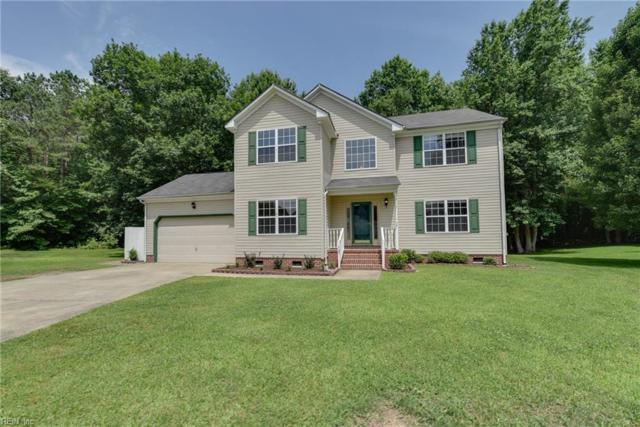 307 Black Pine Ct, Suffolk, VA 23435 (#10200386) :: Berkshire Hathaway HomeServices Towne Realty