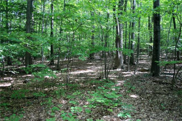 Lot 53 New Beginnings Rd, King & Queen County, VA 23156 (#10202820) :: Austin James Real Estate