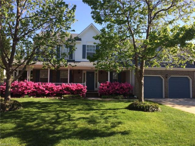 412 Spring Maple Ct, Chesapeake, VA 23320 (#10203322) :: Atkinson Realty