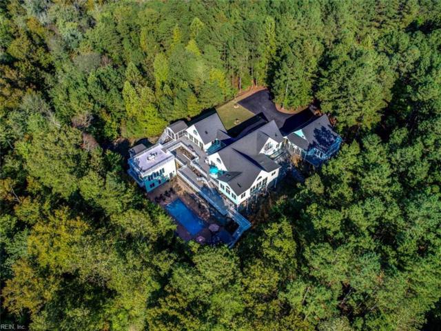 20301 Holly Pines Ln, New Kent County, VA 23011 (#10204664) :: Abbitt Realty Co.