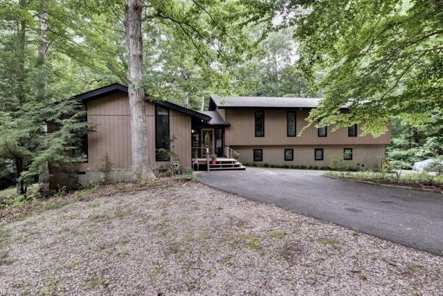 304 Hempstead Rd, James City County, VA 23188 (MLS #10204728) :: Chantel Ray Real Estate