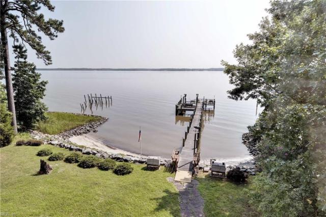 167 Riverview Plantation Dr, James City County, VA 23188 (#10204948) :: The Kris Weaver Real Estate Team