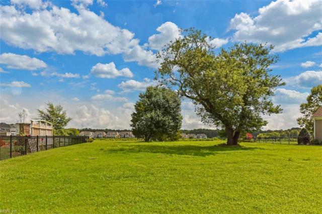 3008 N James Dr, Suffolk, VA 23435 (#10206959) :: Reeds Real Estate
