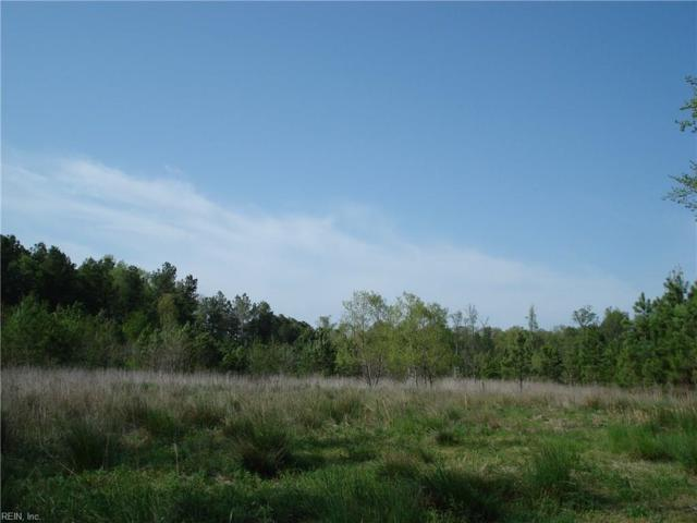 27 Acres On Brewers Neck Blvd, Isle of Wight County, VA 23314 (#10207238) :: Abbitt Realty Co.