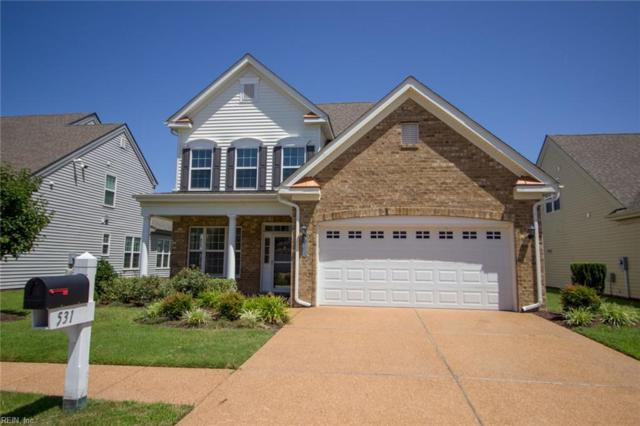 531 Strathmore Ln, Chesapeake, VA 23322 (#10207335) :: The Kris Weaver Real Estate Team
