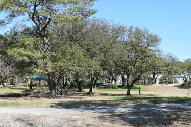 9601 7th Bay St, Norfolk, VA 23518 (#10208954) :: Austin James Real Estate