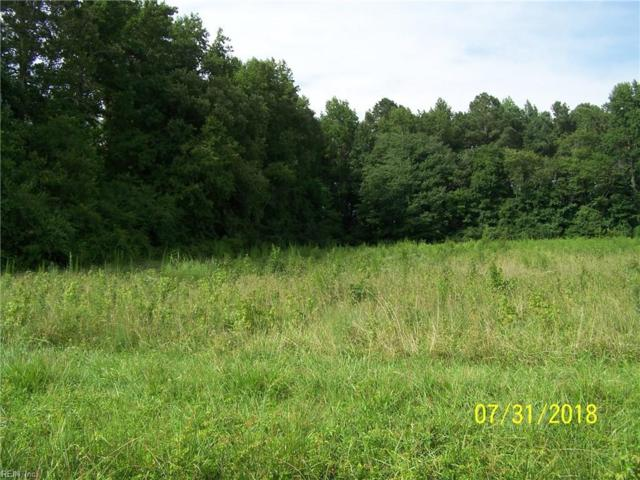 3.41 Airport Dr, Isle of Wight County, VA 23851 (#10210027) :: Atkinson Realty