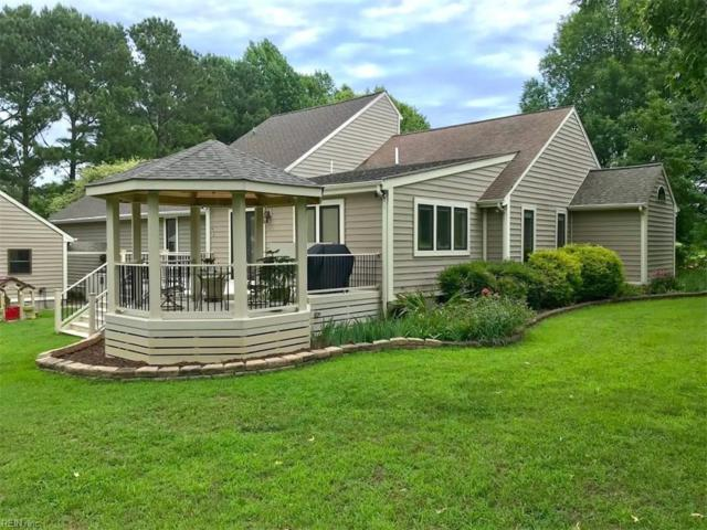 28456 Holly Run Dr, Isle of Wight County, VA 23315 (#10210373) :: The Kris Weaver Real Estate Team