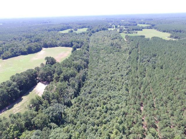 29 Ac Orion Rd, Emporia, VA 23847 (#10210517) :: Berkshire Hathaway HomeServices Towne Realty