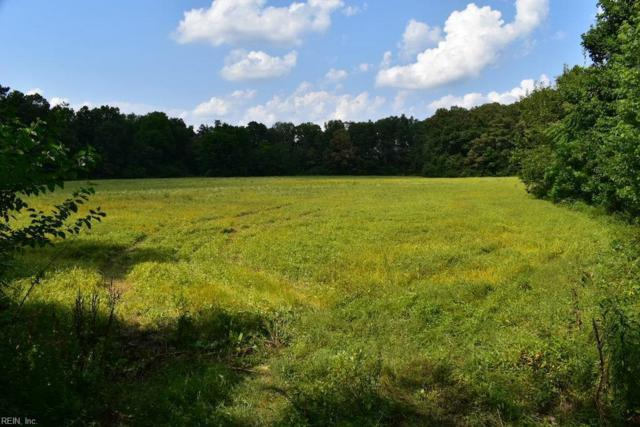 20 Ac White Horse Pike Dr, King & Queen County, VA 23177 (#10210632) :: Atlantic Sotheby's International Realty