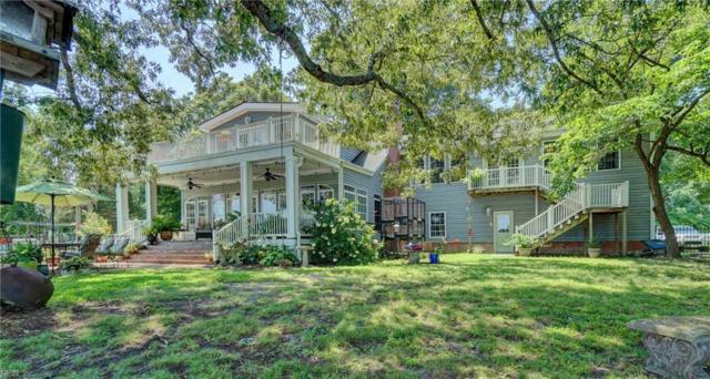 219 Water Pointe Way, Suffolk, VA 23434 (#10211647) :: Berkshire Hathaway HomeServices Towne Realty