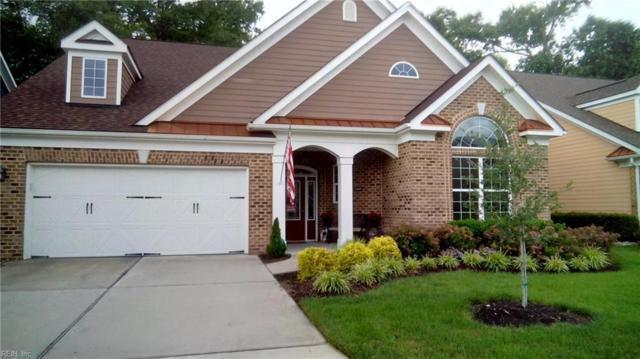 1410 Sandchip Ter, Chesapeake, VA 23320 (#10212087) :: Coastal Virginia Real Estate