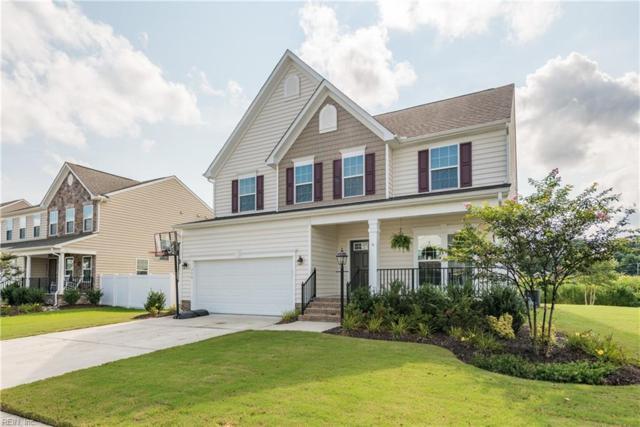 716 Appalachian Ct, Chesapeake, VA 23320 (#10212224) :: Atkinson Realty