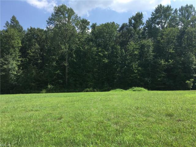 313 Cawdor Xing, Chesapeake, VA 23322 (#10212960) :: The Kris Weaver Real Estate Team
