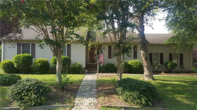 113 Ferrier Pl, York County, VA 23693 (#10213109) :: RE/MAX Central Realty
