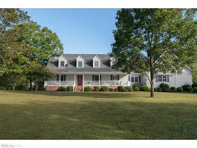 10285 Stallings Creek Dr, Isle of Wight County, VA 23430 (#10213796) :: Berkshire Hathaway HomeServices Towne Realty