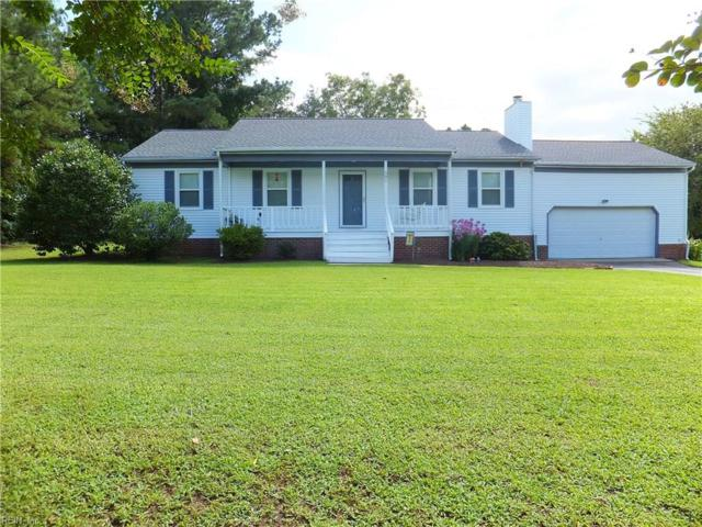 501 Kings Point Ct, Isle of Wight County, VA 23430 (#10213891) :: The Kris Weaver Real Estate Team