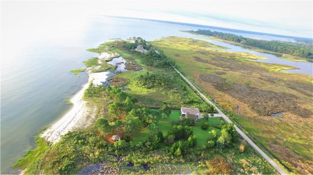 1011 Bay Tree Beach Rd, York County, VA 23696 (#10213907) :: The Kris Weaver Real Estate Team