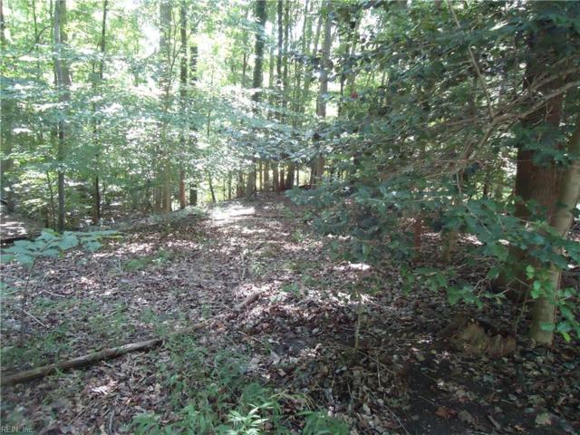 25 Walnut Hills Cir, Williamsburg, VA 23185 (MLS #10214051) :: Chantel Ray Real Estate