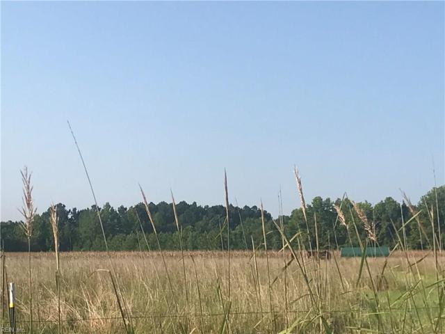 15.88 River Rd, Southampton County, VA 23837 (#10214462) :: Reeds Real Estate