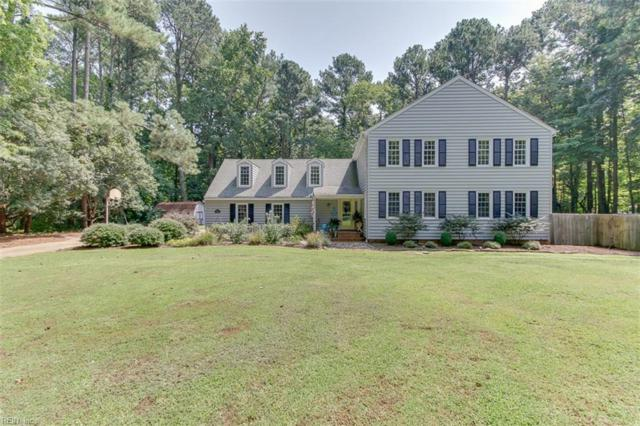 1304 Watersedge Dr, Virginia Beach, VA 23452 (#10214749) :: The Kris Weaver Real Estate Team