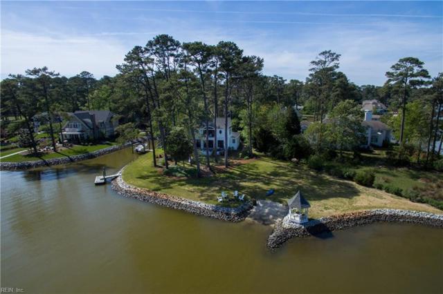 1205 Kittiwake Ct, Virginia Beach, VA 23451 (#10216427) :: The Kris Weaver Real Estate Team