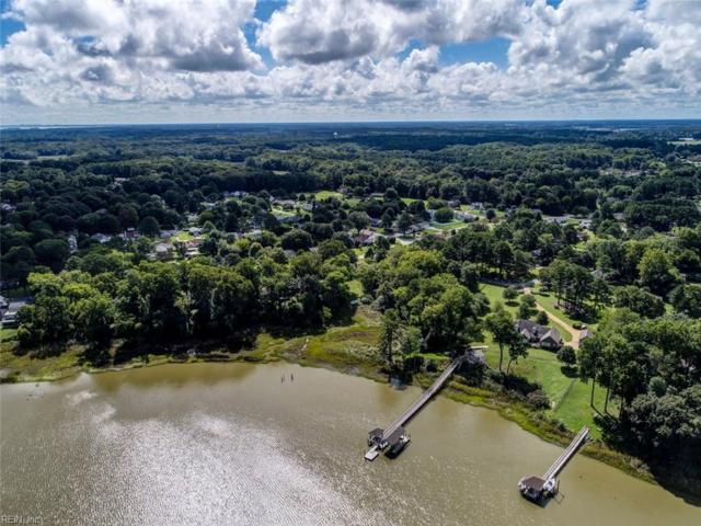 223 Moonefield Dr, Isle of Wight County, VA 23430 (#10216933) :: The Kris Weaver Real Estate Team