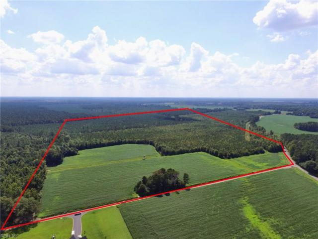 58 Ac Wedgewood Dr, Suffolk, VA 23438 (#10217125) :: Abbitt Realty Co.