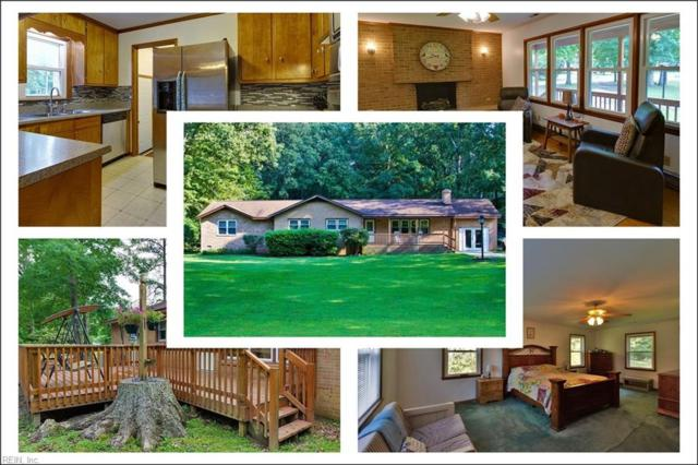 117 Schenck Dr, York County, VA 23188 (#10218655) :: Abbitt Realty Co.