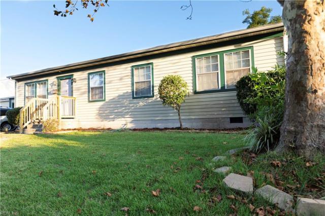 3007 Dedi Ct, Virginia Beach, VA 23453 (#10218787) :: The Kris Weaver Real Estate Team