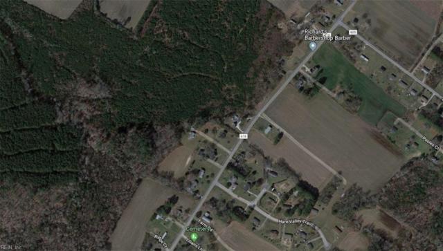 4.25AC Bayside Rd, Northampton County, VA 23350 (#10218861) :: Chad Ingram Edge Realty