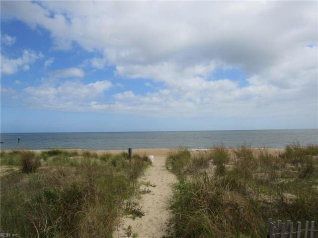1107 E Ocean View Ave #2, Norfolk, VA 23503 (#10219077) :: Reeds Real Estate