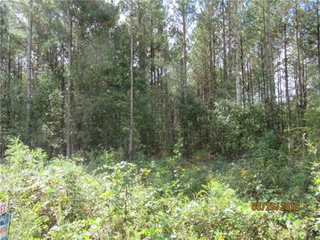 14+ Ac Paige Riddick Rd, Gates County, NC 27937 (#10219087) :: The Kris Weaver Real Estate Team
