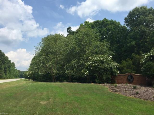 1025 Lawnes Neck Dr, Isle of Wight County, VA 23430 (#10219184) :: Reeds Real Estate