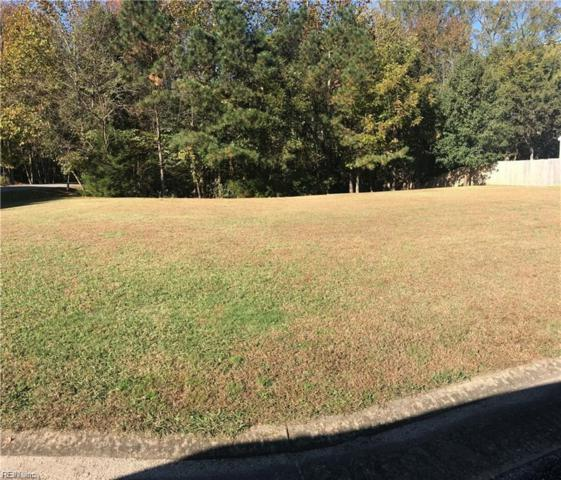 .54AC Watson Dr, Isle of Wight County, VA 23430 (#10220822) :: The Kris Weaver Real Estate Team