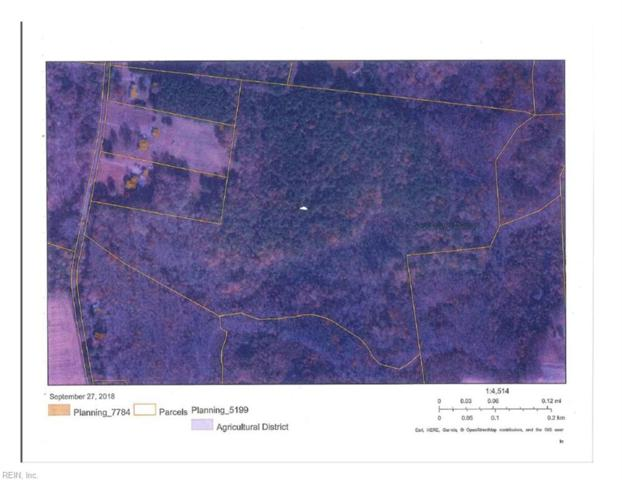 48ACRE Holland Corner Rd, Suffolk, VA 23437 (#10221021) :: Berkshire Hathaway HomeServices Towne Realty